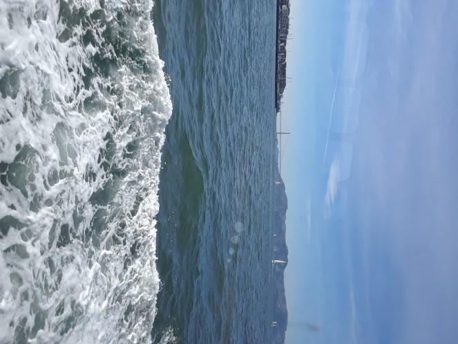 Alcatraz 011