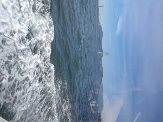 Alcatraz 012