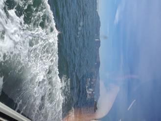 Alcatraz 013